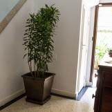 Casa Jardim Paulistano / SP